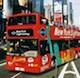 Night Tour in autobus