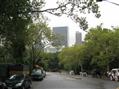 Grattacieli da Central Park - clicca sull'immagine per l'anteprima