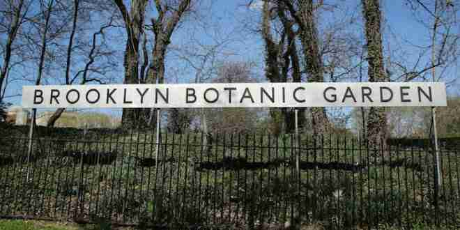 Il Brooklyn Botanic Garden