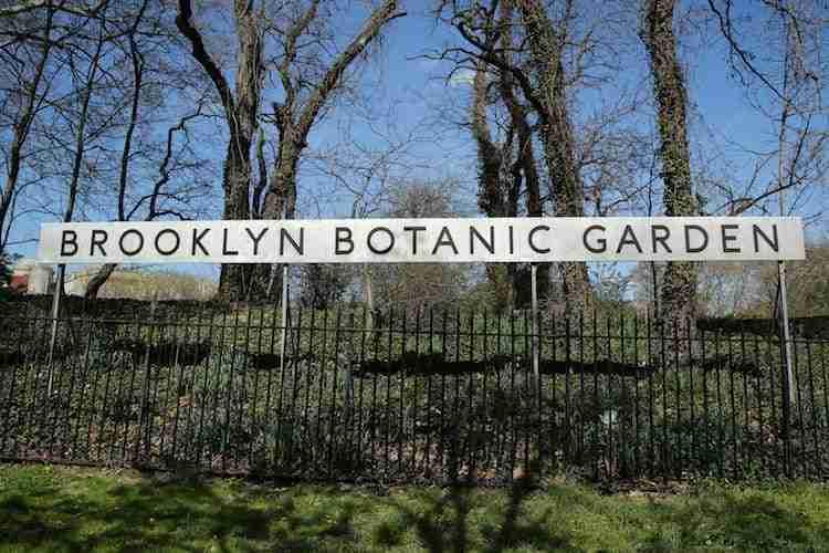 Brooklyn botanic garde giardino botanico di brooklyn for Hotels near brooklyn botanical garden