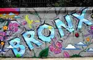 Cosa vedere nel Bronx