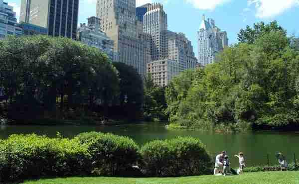 Tour Uptown Manhattan