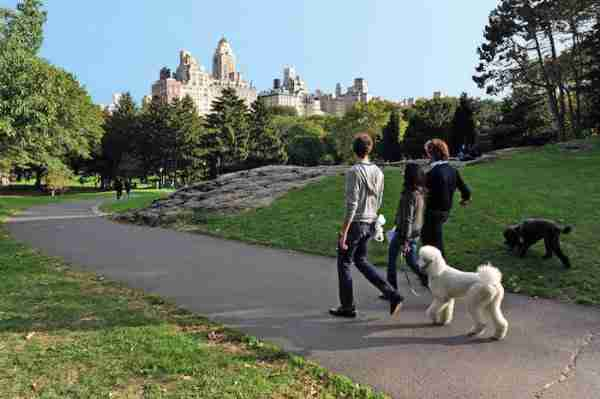 In vacanza a New York col cane