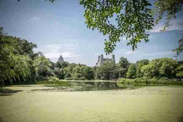 Turtle Pond a Central Park