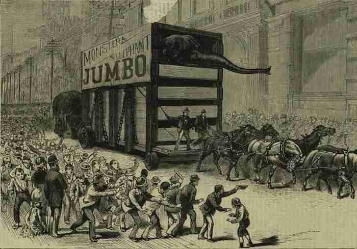 L'arrivo di Jumbo a New York