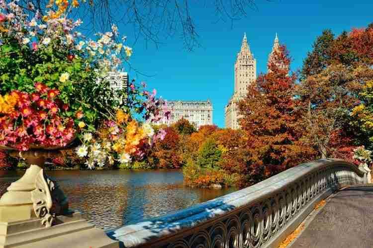 Autunno a New York: pro e contro