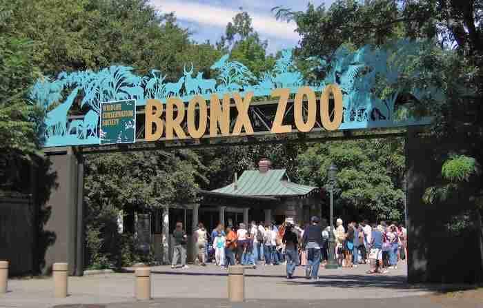 Entrata dello zoo del Bronx